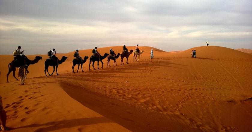 Enjoy Desert Safari In Dubai